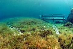 Underwater_18