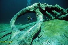 Underwater_23